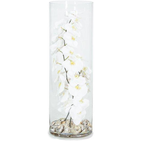 NATURAL ILLUSION glass vase, 25x75 cm, orchid white, shells Turbo Sermaticus