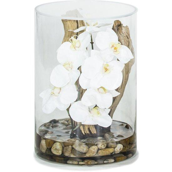 NATURAL ILLUSION glass vase, 25x35 cm, orchid white, driftwood, stones L: 25 , W: 25 , H: 35 , H: 35 | Orchid/stones
