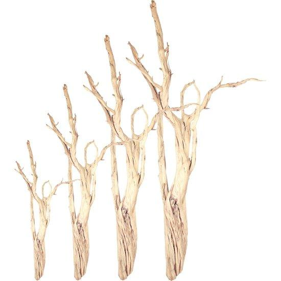 wood decoration, branches of wood