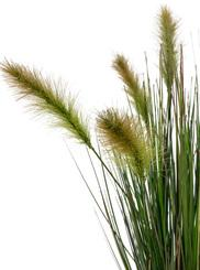 FOXTAIL GRAS artificial plant, 60 cm H: 60 | green-yellow