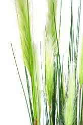 CATTTAIL (TYPHA) planta artificial, 122 cm L: 24 , W: 24 , H: 122 | verde