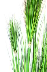 Planta artificial ONION GRASS, 122 cm, verde L: 26 , W: 26 , H: 122 | verde
