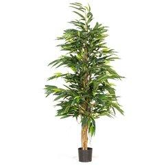 LONGIFOLIA ROYAL NATURAL artificial plant, 180 cm L: 50 , W: 50 , H: 180 | green-brown