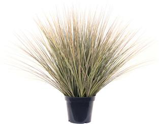 SETS BUSINESS, SAHARA 40/100 cm natural stripes, ONION GRASS 90 cm
