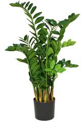 SETS BUSINESS, LOFT 32/120 cm black iron, ZAMIOCULCAS 110 cm