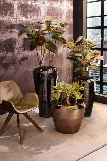 Exclusive planters for indoor use