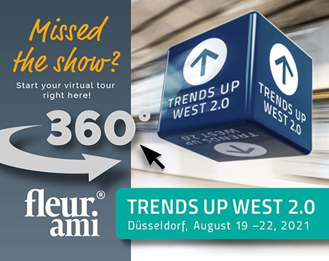 Trends Up West 2.0